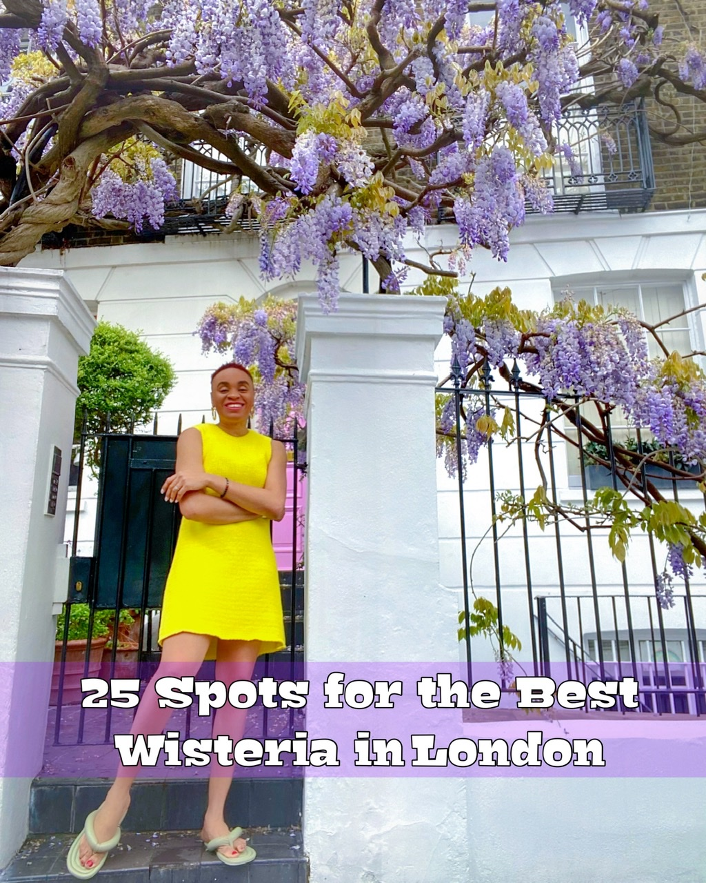Wisteria in London – 26 Places With The Perfect Bloom