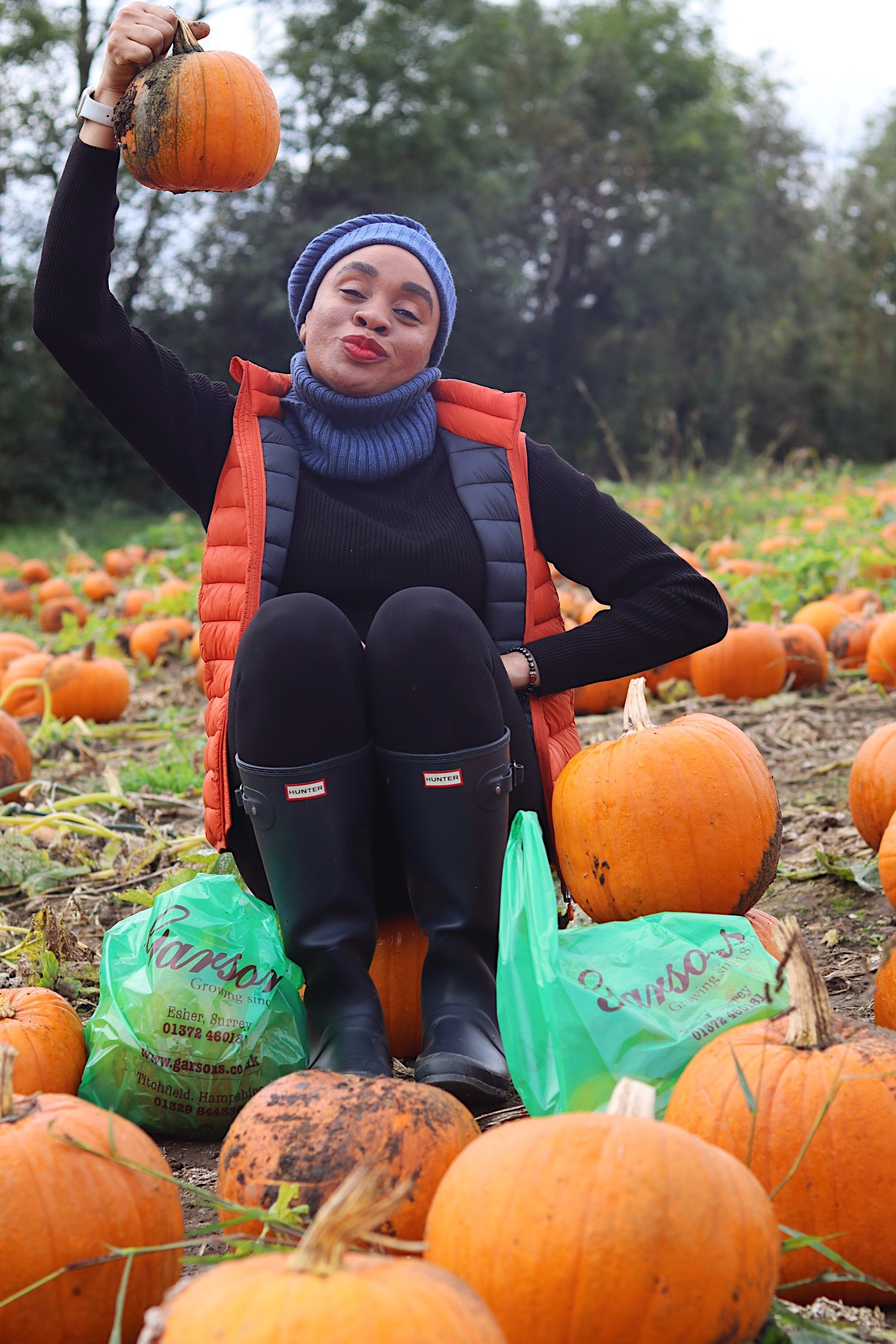Pumpkin Picking In London?? – Where To Go